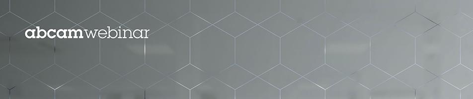 WebinarHero-USE