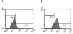 Flow Cytometry / FACS - TLR5 antibody [85B152.5] (ab13875)