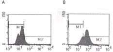 Flow Cytometry - TLR5 antibody [19D759.2] (ab13876)
