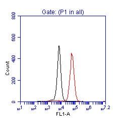 Flow Cytometry - p53 antibody (ab17990)
