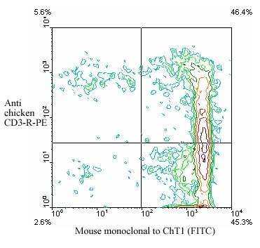 Flow Cytometry - ChT1 antibody [CT1] (FITC) (ab24961)