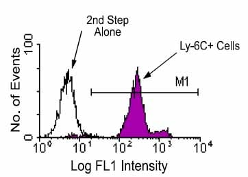 Flow Cytometry - Ly6c antibody [HK1.4] (ab24973)
