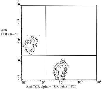 Flow Cytometry - TCR alpha + TCR beta antibody [H57-597] (FITC) (ab25010)