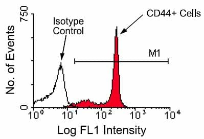 Flow Cytometry - CD44 antibody [KM201] (FITC) (ab25064)