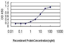 ELISA - Isocitrate dehydrogenase antibody (ab36329)