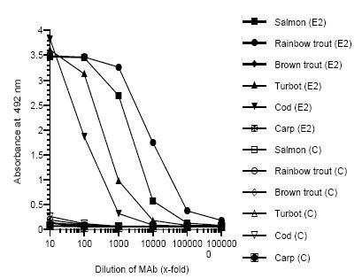 ELISA - zona radiata antibody [MN-8C4] (ab36883)