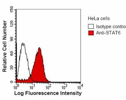 Flow Cytometry - STAT6 antibody [STAAD23A] (ab51022)