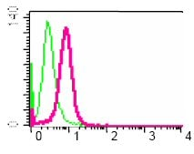 Flow Cytometry - VAV3 antibody [EP1130Y] (ab52938)