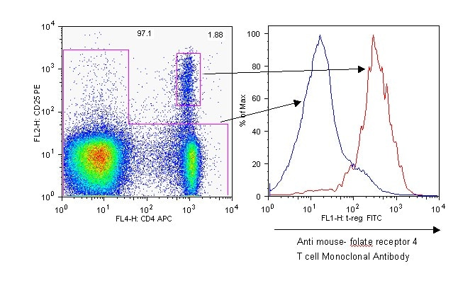 Flow Cytometry - Folate Receptor 4 antibody [TH6] (FITC) (ab53680)