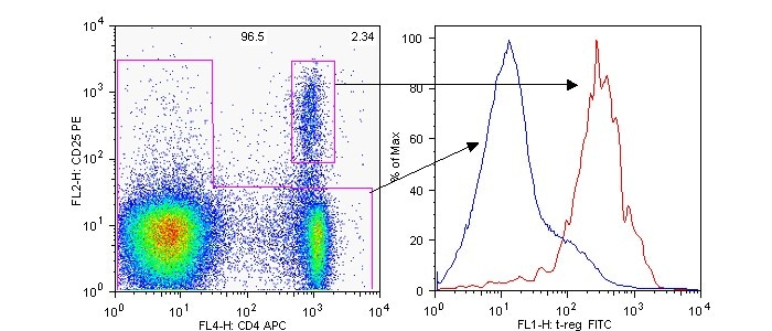 Flow Cytometry - Folate Receptor 4 antibody [12A5] (FITC) (ab53683)