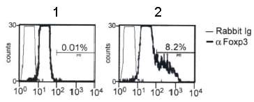 Flow Cytometry - FOXP3 antibody (ab54501)