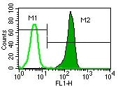 Flow Cytometry - CXCR1 antibody [501] (ab60254)