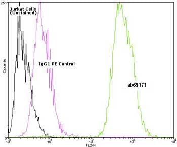 Flow Cytometry - Hsp90 antibody [AC88] (Phycoerythrin) (ab65171)