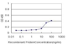 Sandwich ELISA - PU.1/Spi1 antibody (ab66059)