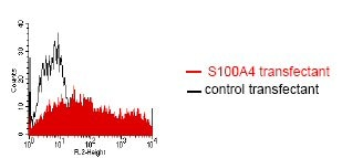 Flow Cytometry - S100A4 antibody [NJ4F3] (ab68124)