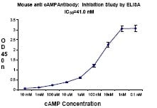 Indirect ELISA - cAMP antibody [M486] - BSA free (ab70280)