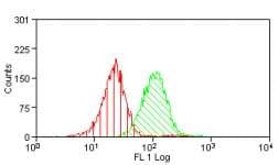 Flow Cytometry - CD65s antibody [VIM-2] (ab74081)