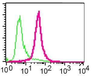 Flow Cytometry - Calpain 2 antibody [EPR2562Y] (ab75994)