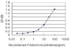 Sandwich ELISA - TSC22 domain family, member 4  antibody (ab76915)