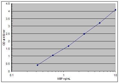 Sandwich ELISA - Myelin Basic Protein antibody (HRP) (ab77895)