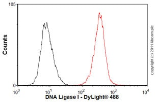 Flow Cytometry-Anti-DNA Ligase I antibody [10H5](ab615)