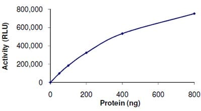 Functional Studies - SIRT6 protein (Active) (ab104030)