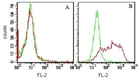 Flow Cytometry - TIM 3 antibody [F38-2E2] (ab104709)