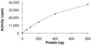 Functional Studies - GRK1 protein (ab105126)