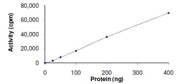 Functional Studies - Tec protein (Active) (ab105197)