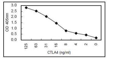 ELISA - CTLA4 antibody [KT50] (HRP) (ab106490)