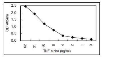 Sandwich ELISA - TNF alpha antibody [KT31] (HRP) (ab106498)