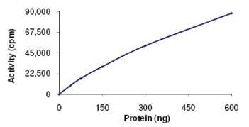 Functional Studies - VRK2 protein (ab107698)