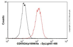 Flow Cytometry - Anti-CDKN2A/p16INK4a  antibody [EPR1473] (ab108349)