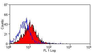 Flow Cytometry - CD63 antibody [AD1] (ab108950)