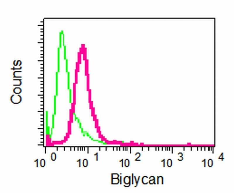 Flow Cytometry - Biglycan antibody [EPR2959] (ab109369)
