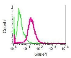 Flow Cytometry - Ionotropic Glutamate receptor 4 antibody [EPR2512(2)] (ab109431)