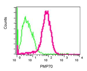 Flow Cytometry - PMP70 antibody [EPR5614] (ab109448)