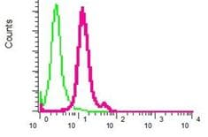 Flow Cytometry - Proteasome 20S alpha 2 antibody [EPR5454] (ab109502)