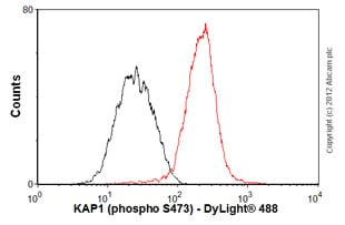 Flow Cytometry - Anti-KAP1 [EPR5249] antibody (ab109545)
