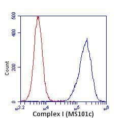 - Anti-Complex I Immunocapture antibody [18G12BC2] (ab109798)