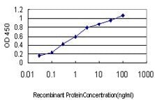 ELISA - Apolipoprotein A II antibody [4F3] (ab109897)