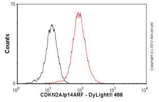 Flow Cytometry-Anti-CDKN2A/p14ARF antibody [ARF 4C6/4](ab11048)