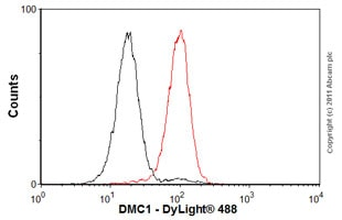 Flow Cytometry-Anti-DMC1 antibody [2H12/4](ab11054)