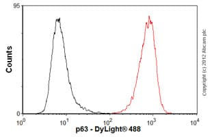 Flow Cytometry-Anti-p63 antibody [4E5](ab110038)