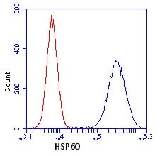 Flow Cytometry - Hsp60 antibody [1D11BD8 ] (ab110312)