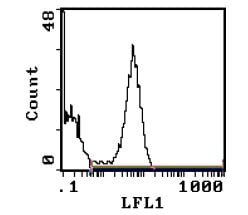 Flow Cytometry - RAT MHC CLASS II RT1D antibody [MRC OX-17] (Biotin) (ab111892)