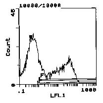 Flow Cytometry - MHC class II RT Ib antibody [MRC OX-3] (Biotin) (ab112105)