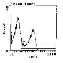 Flow Cytometry - MHC class II RT Ib antibody [MRC OX-6] (Biotin) (ab112108)