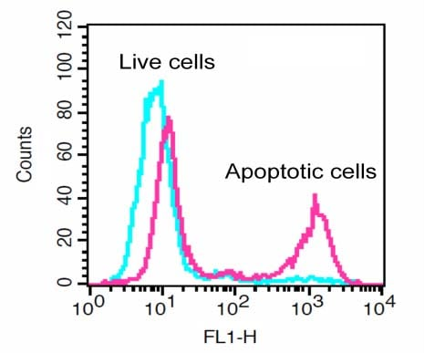 Flow Cytometry - Generic Caspase Activity Assay Kit (Fluorometric - Green) (ab112130)