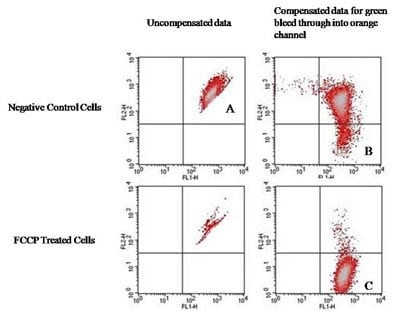 Flow Cytometry - JC-10 Mitochondrial Membrane Potential Assay Kit (Flow Cytometry) (ab112133)